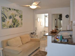 Nice, Modern 1 Bedroom Apartment in Copacabana sleeps up to 4 persons