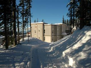 Location, location!  Ski in/out  Pet Friendly too!, Silver Star
