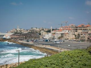 LUXURY PENTHOUSE –CHARMING  OLD JAFFA