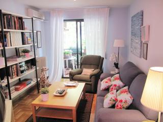Bonito piso del artista con garaje y WIFI, Logrono