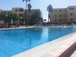 Swimming pool and sunbeds / Piscina y sus hamacas