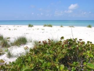 Beautiful Gulf Views! Pet Friendly! Island Living!, Placida