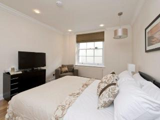 Modern 2 bed 2 bath Mayfair Apartment