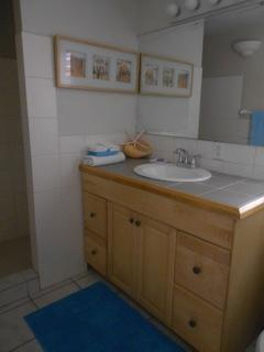 Large bathroom with walk-in closet off it.