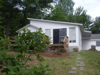 Cozy cottage on the lake, 40 ft dock,swimming, Belmont