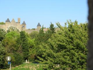 HERITAGE AND NATURE ***, Carcassonne