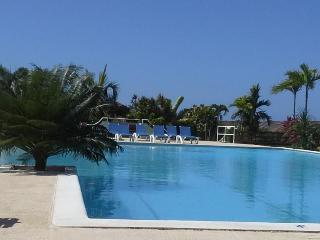 Our Lovely Turquoise Infinity Community Pool and Pool House