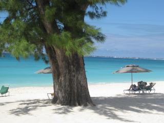 Summer/Fall Promo-Casa Caribe-3BR Cornr Penthse OceanVw 7MB-  near Ritz