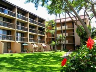 Kihei 1 Bedroom, 1 Bathroom Condo (Maui Vista #2115)