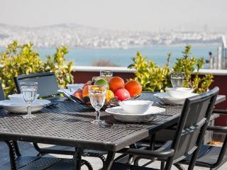 3BR-2BA, GALATA TOWER, SEA VIEW, PRIVATE TERRACE!, Estambul