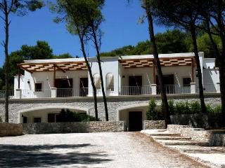 Holiday House for rent in Italy, Puglia - SA174