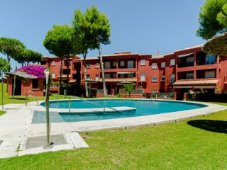 (10429) Ático 2dorm. amplia terraza y piscina