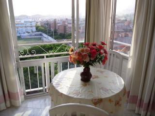 La vista desde terraza