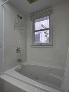 Master bathroom Jacuzzi tub/shower combo