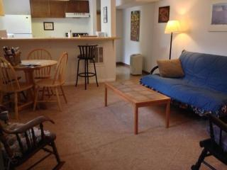The living room features a futon, kitchen table for 4, 2 rocking chairs, and a kitchenette.