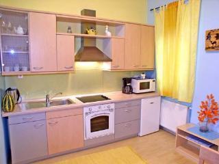 Apartment VIKTORIJA - fully equipped kitchen