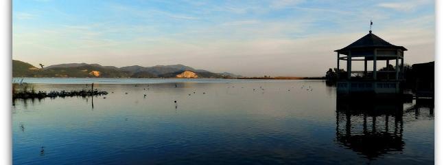 foto turistica - Torre del Lago - il lago