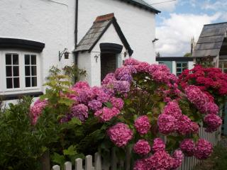 Heather Cottage, Brentor