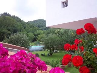 Casa Petunia - Red, San Martino in Freddana