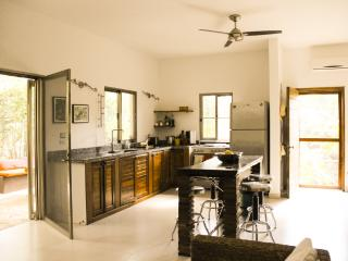 EXCELLENT OPTION IN TULUM: NEW CONDO COBA 2 BEDROOMS WITH POOL IN A JUNGLE PLOT.