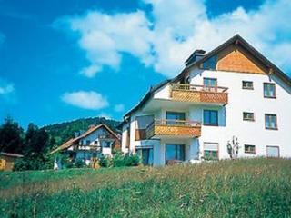 Vacation Apartment in Todtmoos - 538 sqft, Ruhig, idyllisch, familienfreundlich (# 5337)