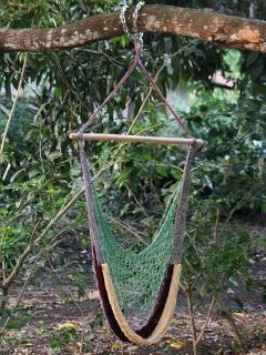 Hammock chair out back on the mango tree