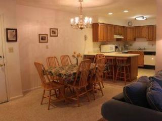 Well-furnished 1BR condo with fireplace - C1 237C, Lincoln