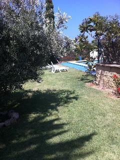piscina un oasi con cespes