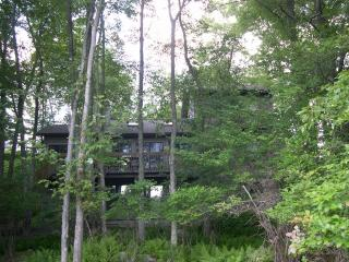 Treehouse overlooking peaceful Lake Natalie, Gouldsboro
