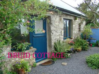 Quiet cottage on a beautiful hillside with  internet, Ennis