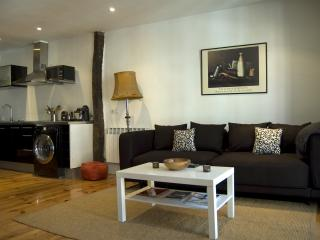 Apartment in the centre of Vitoria