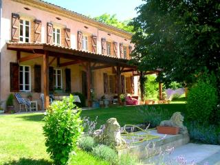 Delightful French Country Manor, Salvagnac