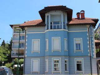 DELUXE apartment Miljacka