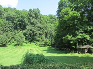 Your view of the lawns and gardens from from your patio