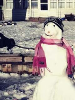 Build a snowman and welcome wintertime!