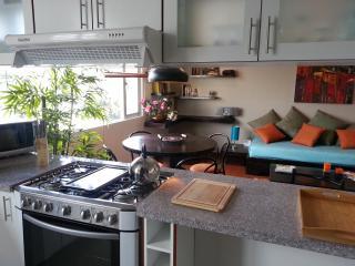 Hermoso diseño Suite Tamayo - Mariscal - Quito.