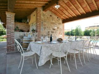 Sunbathing&dining area by pool,beautiful white iron table for 12,barbecue,pizza oven,bathroom,shower