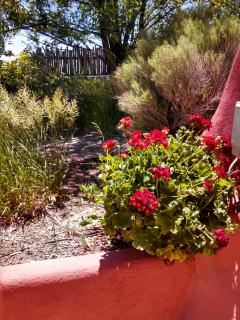 Experience a Stay in a Beautiful Earthship,,,, Taos