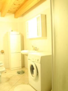 Bath with washing machine, shower on right, little cabinet.