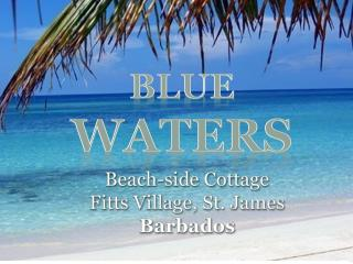 Blue Waters Beach side Cottage, St. James, Fitts