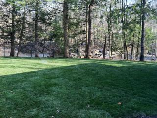Lawn off patio