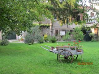 la fragola, Lucca