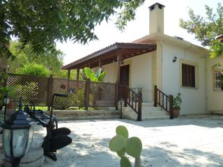 Farm House, Ozankoy