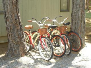 4 new adult bikes avaialble mid-June through September- bring your helmets.