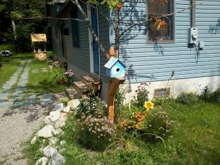 Robin's Nest-Spectacular 3 Bdrm 2 Bath Sleeps 8-10, Caroga Lake