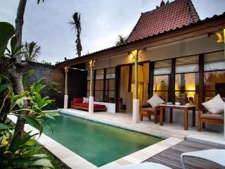 Alam Bidadari 1 Bedroom villa,Seminyak