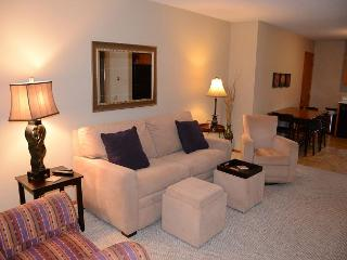 Ideal Mayo Clinic location! Clean! Cozy! See Reviews! 5 Stars! Free WiFi..., Rochester