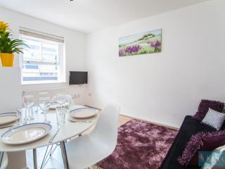Spacious Wi-Fi 1Bedroom Central London Flat, Londres