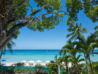 Coral Cove 5 - Shutters at Payne's Bay, Barbados - Beachfront, Jacuzzi Pool, Paynes Bay
