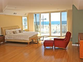 Modern Luxury in Venice Beach, Los Angeles